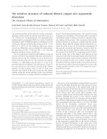 Tài liệu Báo cáo khoa học: The solution structure of reduced dimeric copper zinc superoxide dismutase doc