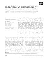 Tài liệu Báo cáo khoa học: PC1⁄3, PC2 and PC5⁄6A are targeted to dense core secretory granules by a common mechanism doc