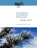 Tài liệu European Economic Forecast Winter 2013 pdf