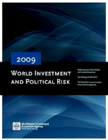 Tài liệu World Investment and Political Risk 2009 docx