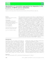Tài liệu Báo cáo khoa học: Modulation of a-synuclein aggregation by dopamine in the presence of MPTP and its metabolite pptx