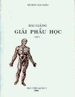 Tài liệu Bài giảng Giải phẫu học - Tập 1 ppt