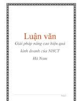 Tài liệu Luận văn: Giải pháp nâng cao hiệu quả kinh doanh của NHCT Hà Nam pdf