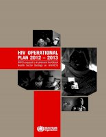 Tài liệu HIV OperatIOnal plan 2012 – 2013 WHO''''s support to implement the Global Health Sector Strategy on HIV/AIDS ppt