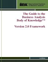 Tài liệu The Guide to the Business Analysis Body of Knowledge™: Version 2.0 Framework pptx