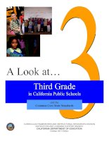 Tài liệu A Look at…Third Grade in California Public Schools doc