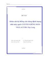Khảo sát thiết kế hệ thống cân băng định lượng nhà máy gạch COTTO Đáy Giếng VIGLACERA Hạ Long