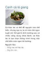Tài liệu Canh cá lá giang pdf