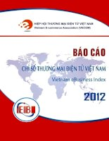Tài liệu Báo cáo Chỉ số thương mại điện tử Việt Nam 2012 pdf