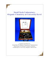 Tài liệu Small Scale Laboratory: Organic Chemistry at University Level doc