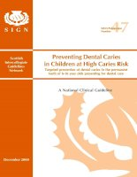Tài liệu Preventing Dental Caries in Children at High Caries Risk doc