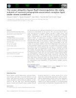Tài liệu Báo cáo khoa học: The yeast ubiquitin ligase Rsp5 downregulates the alpha subunit of nascent polypeptide-associated complex Egd2 under stress conditions docx