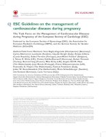 Tài liệu ESC Guidelines on the management of cardiovascular diseases during pregnancy pdf