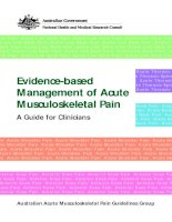 Tài liệu Evidence-based Management of Acute Musculoskeletal Pain ppt