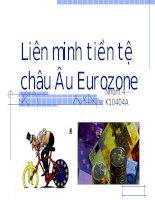 tiểu luận liên minh tiền tệ châu âu eurozone