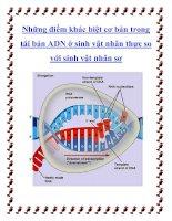 Tài liệu Những điểm khác biệt cơ bản trong tái bản ADN ở sinh vật nhân thực so với sinh vật nhân sơ docx