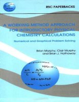 working method approach for introductory physical chemistry calculations (RSC, 1997)(0854045538)