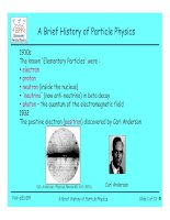 a brief history of particle physics