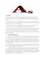 bài báo cáo thực tập về asen