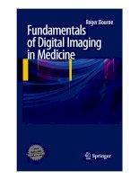 roger bourne  -  fundamentals of digital imaging in medicine