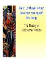 bài giảng kinh tế vi mô chương 2:lý thuyết về sự lựa chọn của nguwoif tiêu dùng - ts. nguyễn tiến dũng