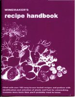 winemakers recipe handbook - massaccesi