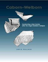 university alabama press caborn-welborn constructing a new society after the angel chiefdom collapse aug 2004