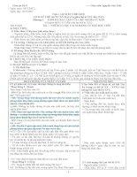 Giáo án lịch sử lớp 8 chuẩn