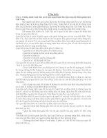 Câu hỏi và đáp án môn Luật Dân Sự 1 Đại Học