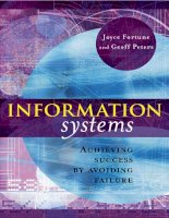 information systems achieving success by avoiding failure
