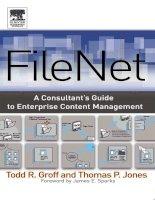 filenet a consultants guide to enterprise content management (2004) ddu
