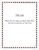 Tiểu luận: Phân tích tác động của thuế nhập khẩu đến thị trường ôtô tại Việt Nam