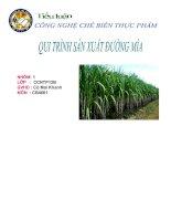 tiểu luận công nghệ chế biến thực phẩm   qui trình sản xuất đường mía