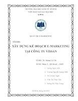 Tiểu luận quản trị marketing: Xây dựng kế hoạch emarketing tại công ty Vissan