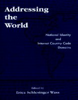 addressing the world national identity and internet country code domains