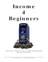 Income 4 Beginners for online marketing
