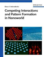 competing interactions and patterns in nanoworld, 2007, p.218