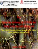 Nghiên cứu ảnh hưởng của  LP20 đến sự sinh trưởng và đáp ứng miễn dịch của tôm