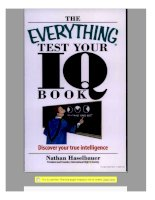 The everything test your IQ