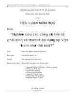 Tiểu luận: Nghiên cứu các công cụ tiền tệ phái sinh và thực tế áp dụng tại Việt Nam như thế nào
