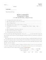 Tài liệu Cam kết bảo mật tiền lương pdf