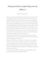Tài liệu Những bài thuốc trị bệnh bằng trái cây (Phần 1) pdf