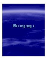 Tài liệu IRM ứng dụng_Phần 1 pptx