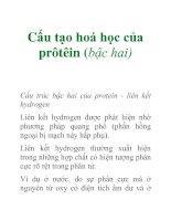 Tài liệu Cấu tạo hoá học của prôtêin (bậc hai) pdf