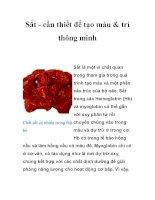 Tài liệu Sắt - cần thiết để tạo máu & trí thông minh pptx
