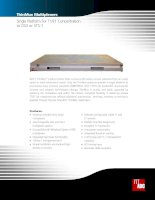 Tài liệu Single Platform For T1/E1 Concentration to DS3 or STS-1 pptx