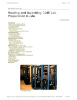 Tài liệu Routing and Switching CCIE Lab Preparation Guide pptx