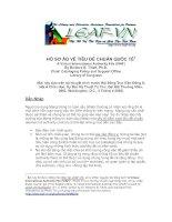 Tài liệu Hồ Sơ Ảo Về Tiêu Chuẩn Quốc Tế docx