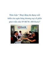 """Tài liệu Thảo luận """" Hoạt động tín dụng xuất khẩu của ngân hàng thương mại cổ phần phát triển nhà TP HCM ( HD Bank)"""" pdf"""