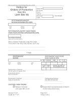 Tài liệu Đơn xin lệnh bảo vệ pdf